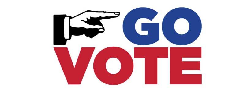Go Vote Banner